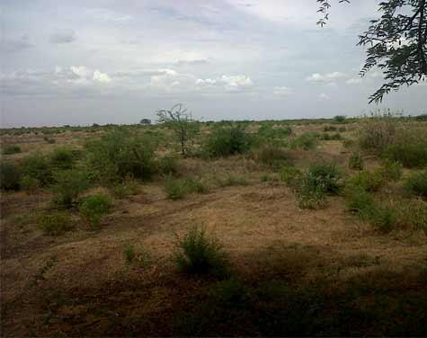 Madurai Land