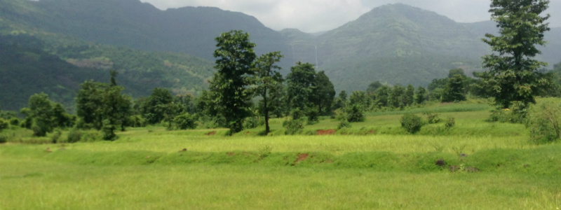 Raigad Green Land